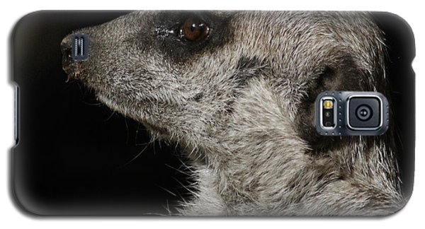 Meerkat Profile Galaxy S5 Case by Ernie Echols