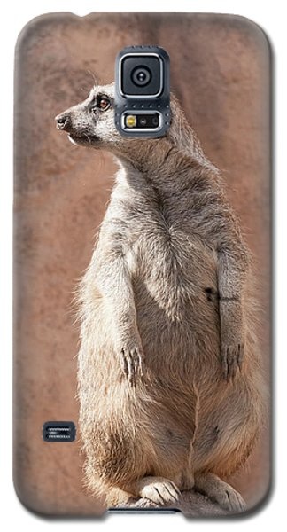 Meerkat Sentry 5 Galaxy S5 Case
