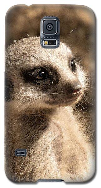 Meerkatportrait Galaxy S5 Case