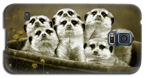 Meerkats Galaxy S5 Case by Thanh Thuy Nguyen