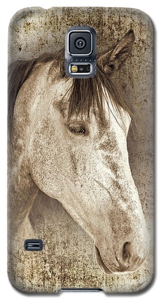 Meet The Andalucian Galaxy S5 Case