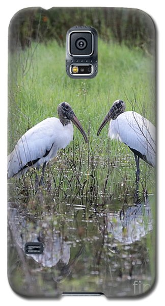 Meeting Of The Minds Galaxy S5 Case by Carol Groenen