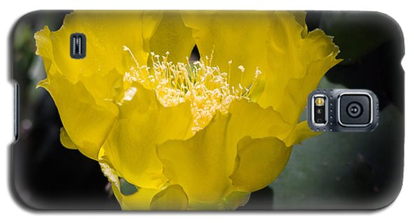 Mellow Yellow Cactus Flower Galaxy S5 Case