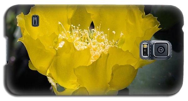 Mellow Yellow Cactus Flower Galaxy S5 Case