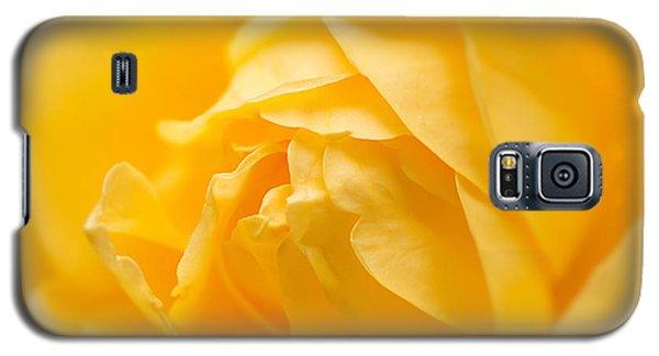 Mellow Yellow Rose Galaxy S5 Case
