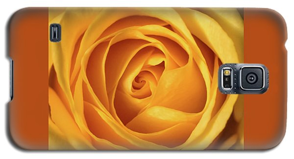 Galaxy S5 Case featuring the photograph Mellow Yellow Rose Square by Terry DeLuco