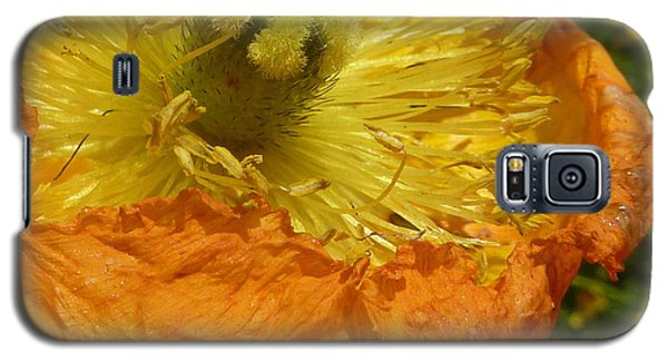 Mellow Yellow - Signed Galaxy S5 Case