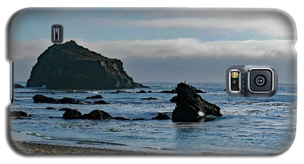Mendocino Coast No. 1 Galaxy S5 Case