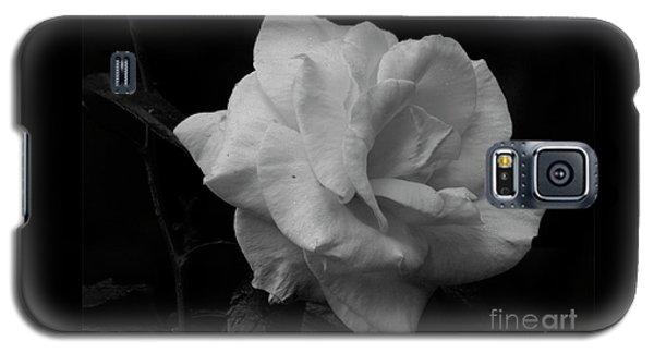 Mendocino Rose01 Galaxy S5 Case
