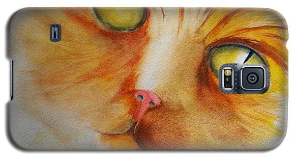 Meow Galaxy S5 Case