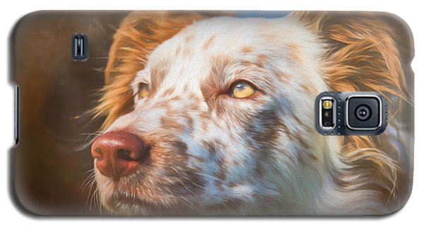 Galaxy S5 Case featuring the photograph Merle Border Collie by Eleanor Abramson