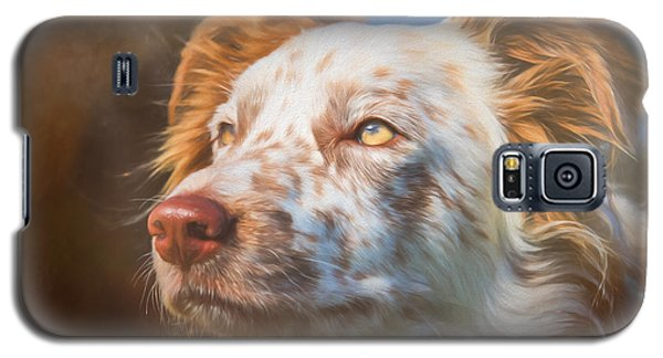 Merle Border Collie Galaxy S5 Case by Eleanor Abramson