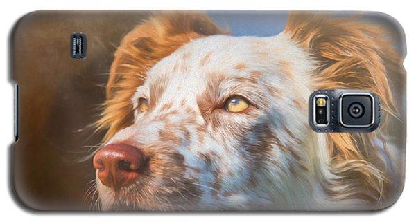 Merle Border Collie Galaxy S5 Case