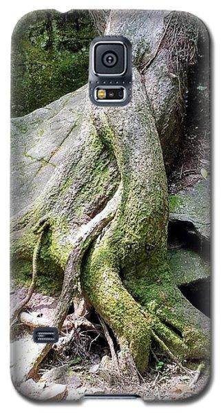 Mermaid Tails Galaxy S5 Case