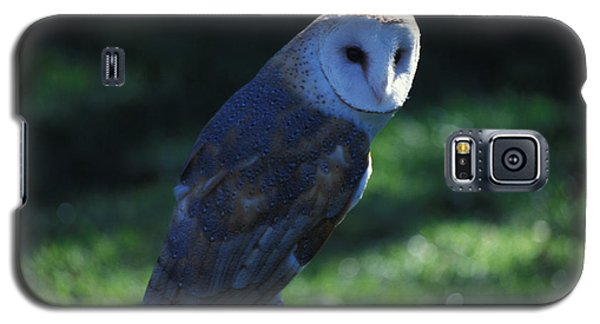 Galaxy S5 Case featuring the photograph Message For Harry Potter by Carl Purcell
