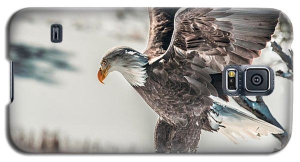 Metallic Bald Eagle  Galaxy S5 Case