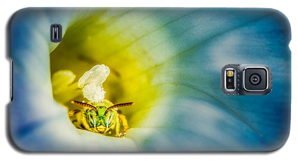 Metallic Green Bee In Blue Morning Glory Galaxy S5 Case
