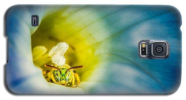Metallic Green Bee In Blue Morning Glory Galaxy S5 Case