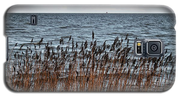 Metallic Sea Galaxy S5 Case