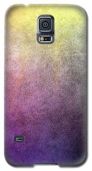 Galaxy S5 Case featuring the pastel Metaphysics Ll by Carrie Maurer