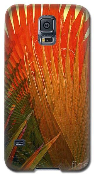 Mexican Palm Galaxy S5 Case by Gwyn Newcombe
