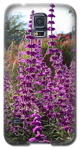 Mexican Sage Galaxy S5 Case