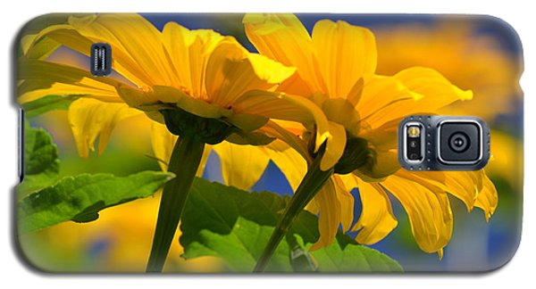 Mexican Sunflower Tree Galaxy S5 Case