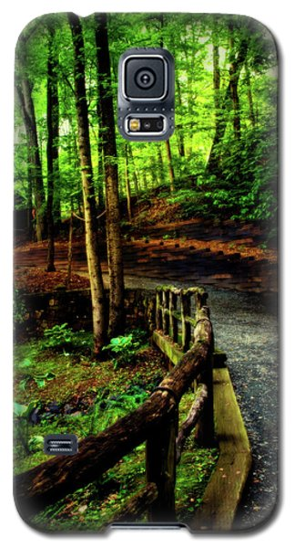 Galaxy S5 Case featuring the photograph Michie Tavern No. 3 by Laura DAddona