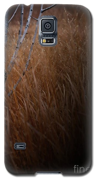 Michigan Galaxy S5 Case