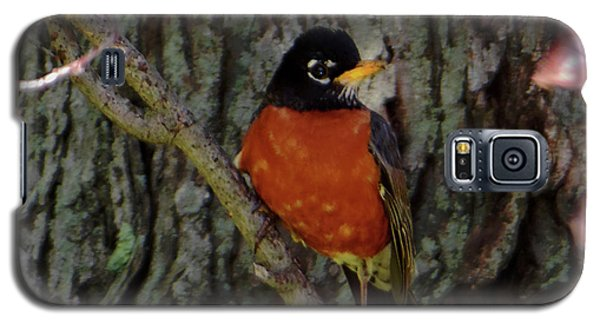 Michigan State Bird Robin Galaxy S5 Case