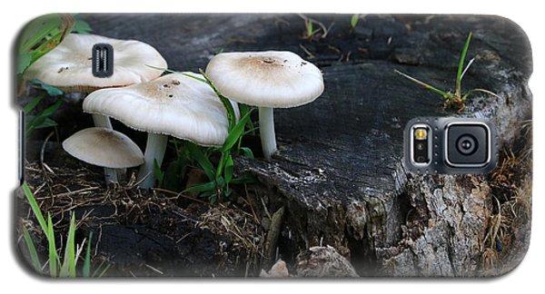 Mid Summers Fungi Galaxy S5 Case