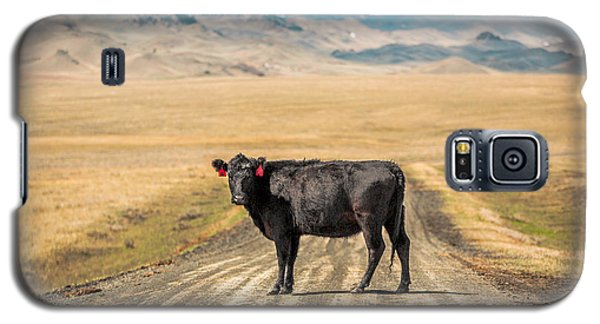 Cow Galaxy S5 Case - Middle Of The Road by Todd Klassy
