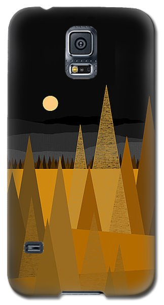 Midnight Gold Galaxy S5 Case by Val Arie