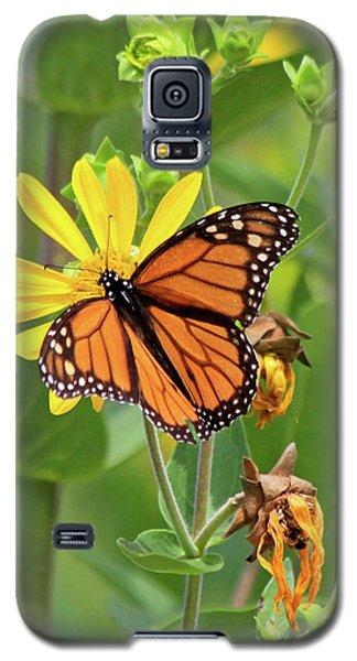 Mighty Monarch   Galaxy S5 Case