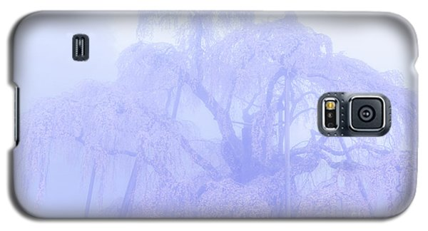Miharu Takizakura Weeping Cherry01 Galaxy S5 Case