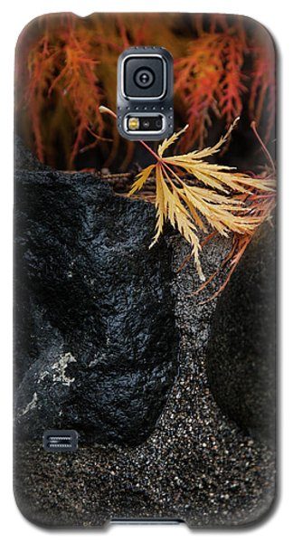 Miksang 5 Autumn Galaxy S5 Case by Theresa Tahara