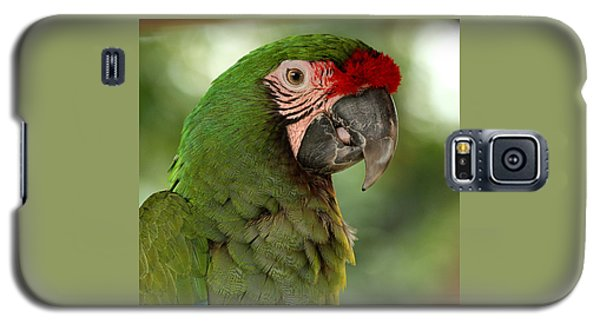 Military Macaw Galaxy S5 Case