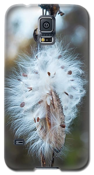 Galaxy S5 Case featuring the digital art Milkweed And Its Seeds by Chris Flees