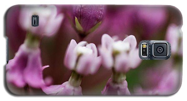 Milkweed Macro Galaxy S5 Case