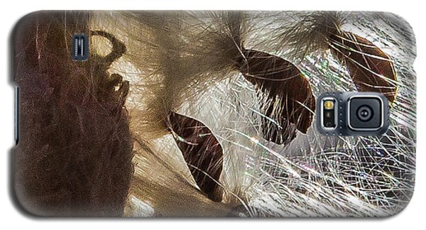 Milkweed Seed Burst Galaxy S5 Case