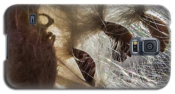 Milkweed Seed Burst Galaxy S5 Case