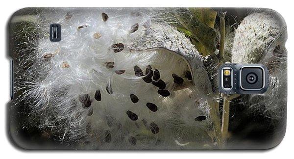 Milkweed Seeds Emerging Galaxy S5 Case