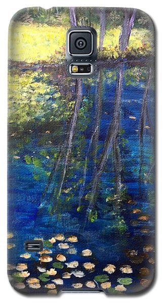 Mill Brook Kingston N H Galaxy S5 Case