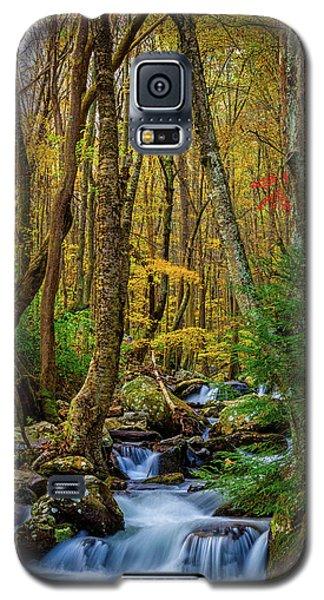Mill Creek In Fall #1 Galaxy S5 Case