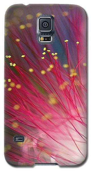 Mimosa Bloom Galaxy S5 Case by Dan Wells