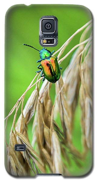 Galaxy S5 Case featuring the photograph Mini Metallic Magnificence  by Bill Pevlor