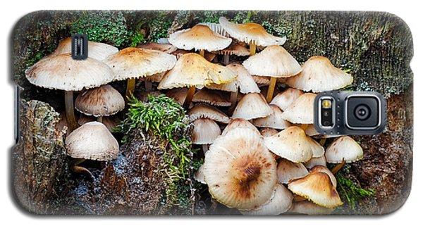 Mini Mushroom Landscape Galaxy S5 Case