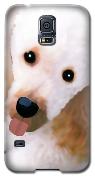 Miniature Poodle Albie Galaxy S5 Case