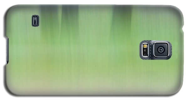 Mint Slice Galaxy S5 Case