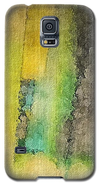Mirror Galaxy S5 Case by William Wyckoff